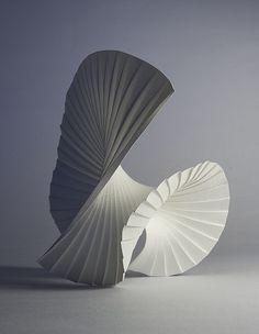Motion Pleat by Richard Sweeney,( wet-folded watercolor paper)