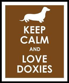 I love my Doxie!