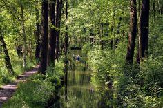 Vilarejo alemão tem rios como ruas e barcos de madeira como veículos