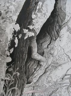 Cilgerran Oaks, ink and watercolour, by Jan Brown. Cardigan Art Society Named Art Club of the Year 2017 Brown Cardigan, Art Society, Name Art, Art Club, Magazine Art, Watercolour, Magazines, Lion Sculpture, Ink