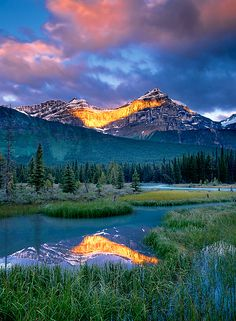 Mistaya River and Mount Epaulette, Banff National Park, Alberta, Canada