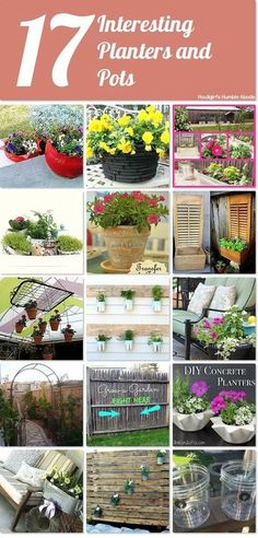 Interesting Planters and Pots for Gardening