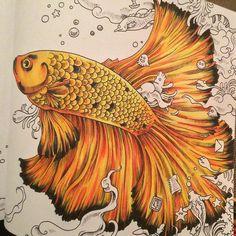 """WIP number 2 #adultcolouring #myCreativeEscape #prismacolor #animorphia @kerbyrosanes"""