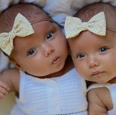 Babies are so cute that everyone has a smile on their faces whenever a baby is around them not to talk of two bundles of joy. Don't you just wish to have twins. This is just cuteness overload 1 2…