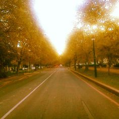 Stellenbosch in Autumn :) Rest Of The World, Country Roads, Autumn, Instagram, Fall