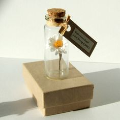 Tiny Personalised Paper Daisy In A Bottle