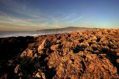 No dia em que se assinalam os 20 anos da criação do parque, a associação ambientalista faz um balanço do que correu mal e aponta alguns sucessos, deixando também sugestões para o futuro. Entre elas, a criação de um parque marinho.