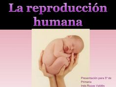 La ReproduccióN Humana Biology, Projects To Try, Nature, Movie Posters, School, Learning, Knowledge, Literatura