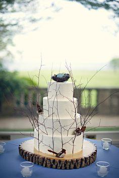 Natural bird cake.