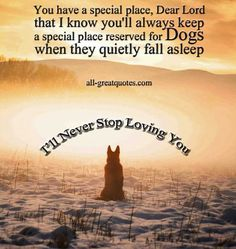 You have a special place, Dear Lord that I know you'll always keep a special place reserved for Dogs when they quietly fall asleep - In Lovi...