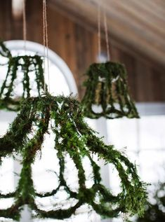 moss covered shade frames for a little whimsy