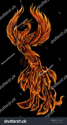 Phoenix Fire bird illustration and character design.Hand drawn Phoenix tattoo Japanese and Chinese style,Legend of the Firebird is Russian fairy tales and it is creature from Slavic folklore. Phoenix Tattoo Feminine, Small Phoenix Tattoos, Phoenix Tattoo Design, Tribal Phoenix Tattoo, Phoenix Design, Phoenix Artwork, Phoenix Images, 1 Tattoo, Body Art Tattoos