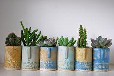 Cactus, tiny succulent pots by Atelier Stella. Succulent Pots, Cacti And Succulents, Planter Pots, Indoor Flowers, Indoor Plants, Plants Are Friends, Succulents In Containers, Cactus Y Suculentas, Ceramic Art