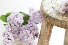 Flieder - alter Holzhocker