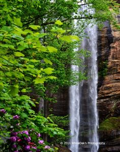 Waterfalls Of North Georgia | http://www.stopsleepgo.com/vacation-rentals/georgia/united-states