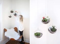 Transform plastic fish bowls into hanging planters.