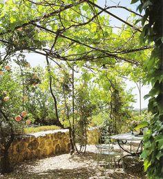 ~linen & lavender: Design Daily - Gardens on my mind...