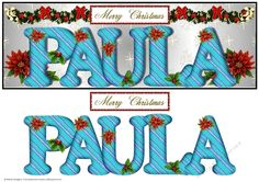 Large DL Poinsettia - PAULA by Sheila Rodgers This design will fit a large DL card. It has a silver gradient background with a design of snowflakesstars. There is a swag of greenery bows baubles beads and poinsettia.  The alphabet has a design of wavy stripes and is decorated with holly and poinsettia. There are larger poinsettia behind the text.  There is also a Christmas sentiment. There is a ma