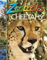 Sign up for your FREE Zoobooks gifts - 1 year Subscription - Free Poster & Stickers with Order