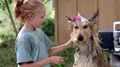 A scene from 'Because Of Winn Dixie'