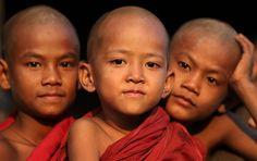 Myanmar, monks and novices | por Dietmar Temps