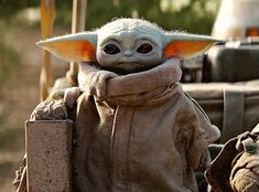 Cute Baby Yoda Memes Because The Internet Can't Even - Memebase - Funny Memes Star Wars Logos, Star Wars Meme, Star Wars Baby, Baby Animals, Cute Animals, Cuadros Star Wars, Disney Babys, Movies And Series, Chewbacca