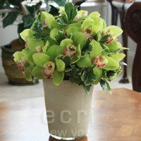 DutZ Conic in Creme. A simple, mouth-blown pot that is made fantastic by adding greenery and orchids. Love the color, love the look!