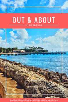 Out And About In Barbados: March Events 2017