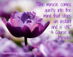 """""""The miracle comes quietly into the mind that stops an instant and is still."""" ~ A Course in Miracles Spiritual Growth, Spiritual Quotes, Miracle Quotes, Peace Of God, A Course In Miracles, Life Is A Gift, Hero's Journey, Life Happens, Felt Hearts"""