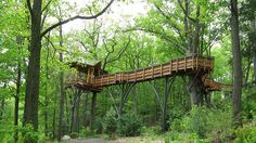 3. The David Wenzel Treehouse, Nay Aug Park, Scranton