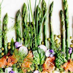 Widzieliście jeszcze na targach #szparagi? Jeśli tak to czym prędzej kupcie i przygotujcie tą tartę 🥬 Świeże szparagi, kremowy #twarożek i wędzony #łosoś @losos_mowi 🥬 Było pysznie! 🥬🥬🥬 PS. A ja wkrótce pokaże Wam na blogu kolejna pyszną wytrawną tartę 🥬 . #tartas #salmon🐟 #salmontart #asparagusrecipes #asparagus