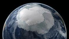 La Antártida estaba cubierta de bosques tropicales hace unos 52 millones de años..