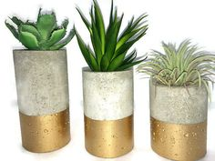 These concrete planters are designed for succulents, air plants, tea lights etc. Each one is hand made and hand colored. Includes set of planters. Modern Planters, Concrete Planters, Planter Pots, Cactus Planters, Decorative Planters, Diy Concrete, Concrete Garden, Planter Ideas, Garden Planters