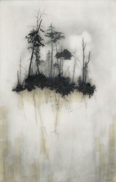 Brooks Salzwedel's drawings are hand drawn graphite on Duralar cast in layers of resin. Colour in the pieces are made by layers of transparent tape. Reflection 2010 16 x 24 inches Mixed Media