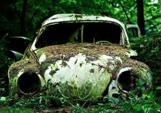 sad VW Abandoned Cars, Abandoned Places, Abandoned Vehicles, Abandoned Buildings, Growth And Decay, Rust In Peace, Rusty Cars, Old Classic Cars, Barn Finds