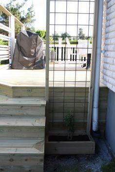 Trellis in corner of deck that goes up to roof overhang Wall Trellis, Garden Trellis, Garden Beds, Home And Garden, Outdoor Rooms, Outdoor Gardens, Outdoor Living, Deck Makeover, Garden Inspiration