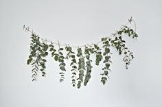 A quick (and easy) DIY eucalyptus garland - DIY home decor - Your DIY Family Here is a quick and easy diy eucalyptus garland to make this Christmas. This eucalyptus garland makes a really pretty backdrop to a dining table. Dried Eucalyptus, Eucalyptus Garland, Floral Garland, Flower Garlands, Floral Chandelier, Easy Christmas Crafts, Simple Christmas, Homemade Christmas, Minimalist Christmas