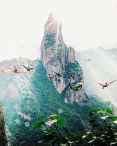 Hanging out in the mountains 😜⛰⛱ Shangai, China. Photo by Tag your adventurer friends 🍃 🌞 Good Vibes Lifestyle 🌞 The best self help book 📓 of the last several 👌 …. Oh The Places You'll Go, Places To Visit, All Nature, Beautiful Places To Travel, To Infinity And Beyond, Future Travel, Travel Aesthetic, Adventure Is Out There, Travel Goals