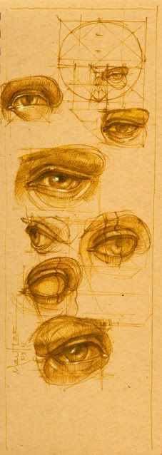 ••• ‡‡‡‡‡‡ ••• The • Book • of • Bones ••• ‡‡‡‡‡‡ ••• Eye Anatomy, Human Anatomy Drawing, Anatomy Art, Drawing School, Life Drawing, Drawing Tips, Drawing Sketches, Pencil Drawings, Art Drawings
