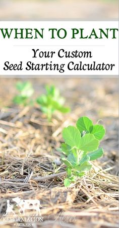 A Custom Seed Sowing Calculator to help you know when to plant your vegetable & herb seeds.   www.reformationacres.com