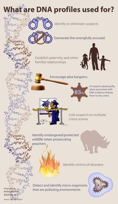 Infographic: What DNA profiles are used for (info courtesy of the DNA Project's website)