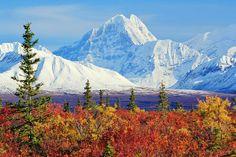 """""""Mount Deborah (3,761m - 12,339ft), Fall Tundra Vista, Matanuska-Susitna Borough, Alaska"""""""