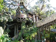 Tarzan's Tree house is a walk through attraction at Disneyland, Los Angeles. It is styled after the 1999 film Tarzan. We can climb to the towering height and enter Tarzan's treetop home. Staircases wind up and down Tarzan's treetop home with surprises around every corner. Take a walk across a suspension bridge too! I enjoyed it more than the kids around!!