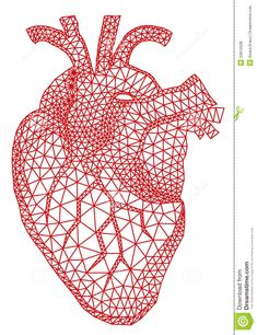 Heart with geometric pattern, vecto. Abstract red human heart with geometric mesh pattern, vector illustration. Geometric Patterns, Geometric Heart, Geometric Sleeve, Abstract Pattern, Anatomical Heart, Human Heart, Anatomy Art, Heart Art, Heart Canvas