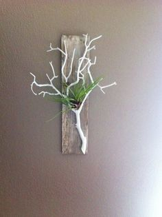 Gray Stained Barn Wood, with Coral White Branch, Air Plant Holder and Wall Hanging