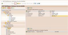 Expose CDS Views as OData Service