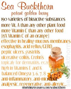 Seven Superfoods, Sea Buckthorn Healing Herbs, Medicinal Herbs, Calcium Rich Diet, Health And Nutrition, Health And Wellness, Healthy Tips, Healthy Foods, Healthy Recipes, Natural Health