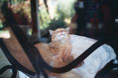 by Len.-, via Flickr