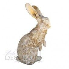 ΛΑΓΟΣ Rabbit, Animals, Animales, Animaux, Rabbits, Animais, Bunnies, Hare, Bunny
