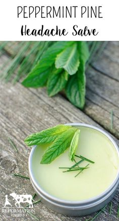 Homemade Medicine Made Simple: Peppermint Pine Headache Salve
